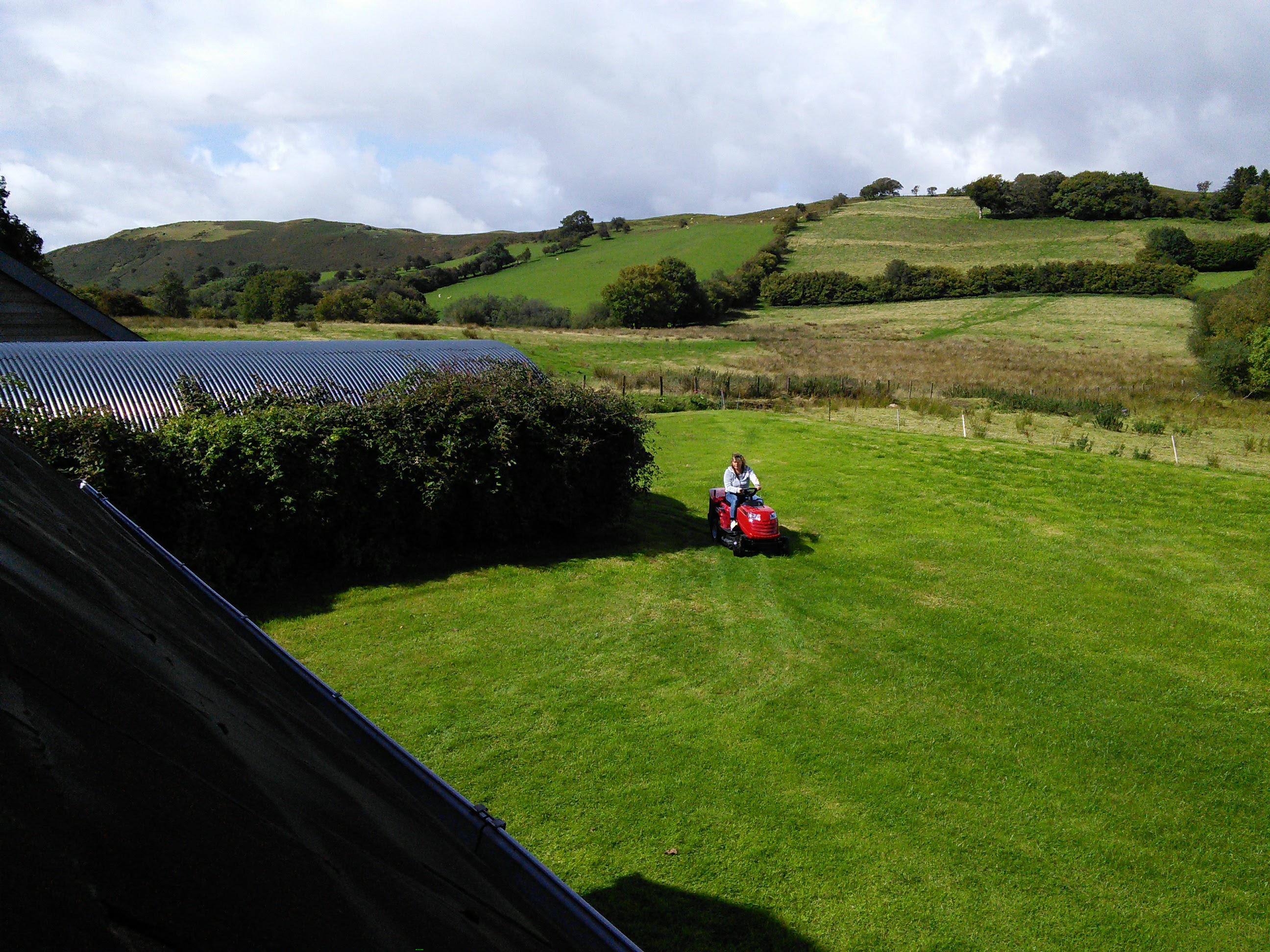 Jo mowing the grass in our back garden