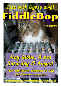 FiddleBop at The Globe At Hay, 17 August 2019