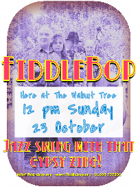 FiddleBop at The Walnut Tree Inn, Blisworth, 23 October 2016